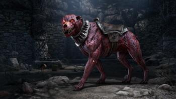 Screenshot7 - The Elder Scrolls Online: Greymoor Digital Collector's Edition
