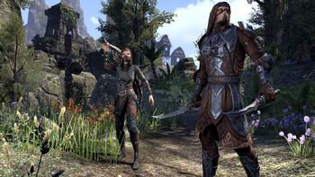 Screenshot4 - The Elder Scrolls Online: Gold Edition