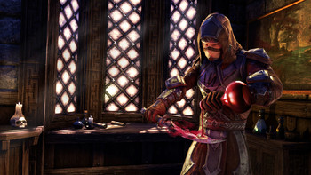 Screenshot6 - The Elder Scrolls Online: Gold Edition