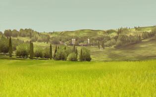 Screenshot2 - Agrar Simulator 2013 Deluxe