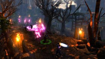 Screenshot5 - Dungeon Siege 3