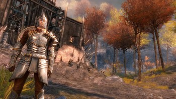 Screenshot1 - Guild Wars 2 - Heroic Edition