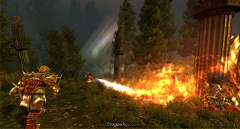 Screenshot5 - Dragon Age - Origins