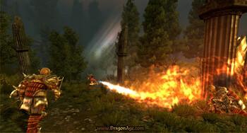 Screenshot5 - Dragon Age - Origins