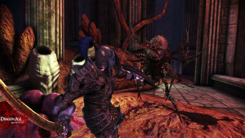 Screenshot6 - Dragon Age - Origins: Awakening