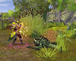 Screenshot2 - SpellForce Platinum