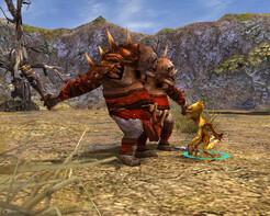 Screenshot5 - SpellForce Platinum