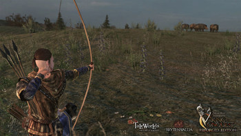 Screenshot5 - Mount & Blade: Warband - Viking Conquest Reforged Edition DLC