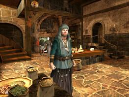 Screenshot3 - The Guild 2