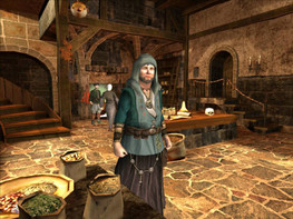 Screenshot3 - The Guild 2
