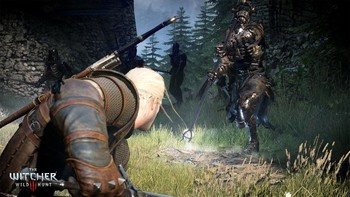 Screenshot8 - The Witcher 3: Wild Hunt
