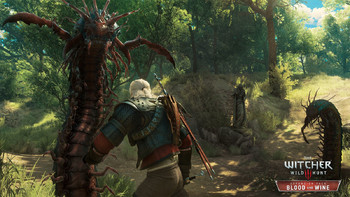 Screenshot1 - The Witcher 3: Wild Hunt - Game of the Year Edition