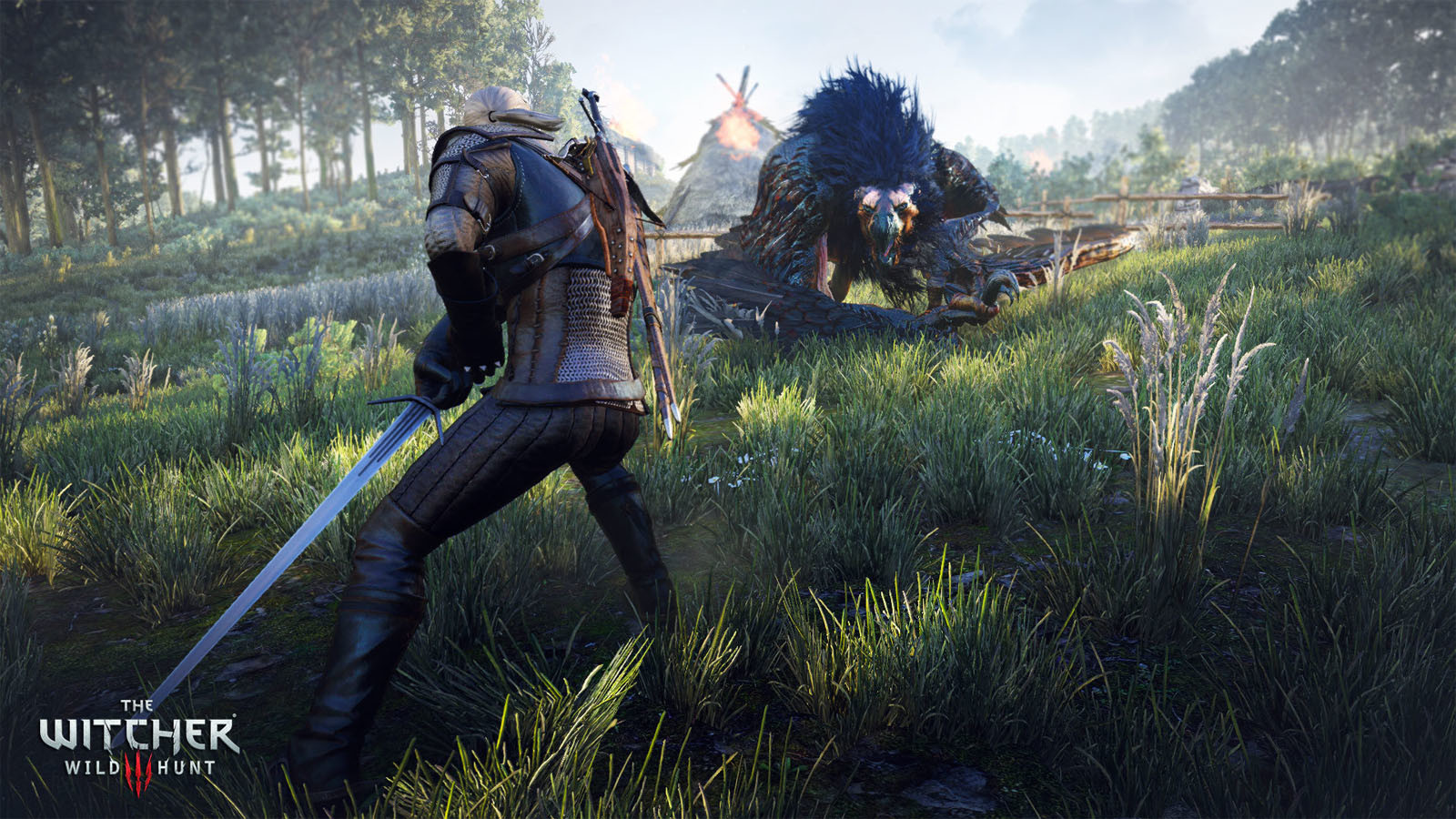 The Witcher wild hunt offline free games for PC