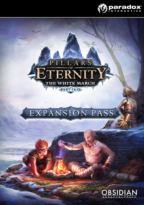 Pillars of Eternity Expansion Pass - Cover