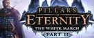 Pillars of Eternity - The White March: Part II