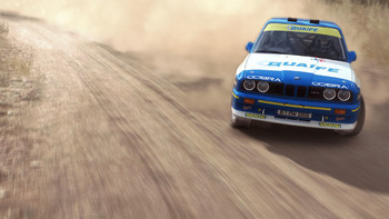 Screenshot6 - DiRT Rally
