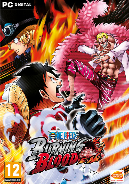 One Piece Burning Blood - Cover / Packshot