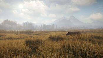 Screenshot10 - theHunter: Call of the Wild