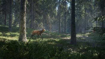 Screenshot12 - theHunter: Call of the Wild