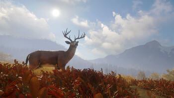 Screenshot6 - theHunter: Call of the Wild