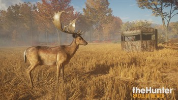 Screenshot5 - theHunter: Call of the Wild - Tents & Ground Blinds