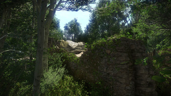 Screenshot7 - Kingdom Come: Deliverance - The Amorous Adventures of Bold Sir Hans Capon