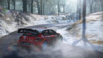 Screenshot4 - WRC 7 FIA World Rally Championship