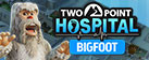 Two Point Hospital: Bigfoot