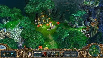 Screenshot1 - King's Bounty: Platinum Edition