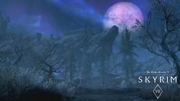 Screenshot6 - The Elder Scrolls V: Skyrim VR