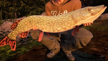 Screenshot4 - Fishing Sim World: Quad Lake Pass
