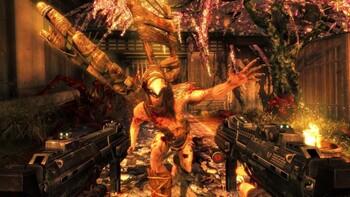 Screenshot1 - Shadow Warrior