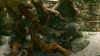 Screenshot3 - Biotope