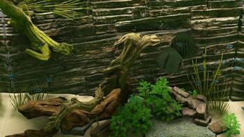 Screenshot6 - Biotope