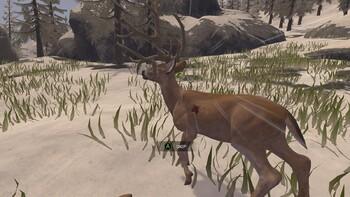 Screenshot9 - Deer Hunter Reloaded