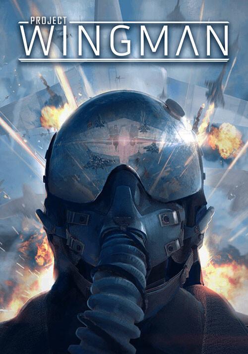 Project Wingman - Cover / Packshot